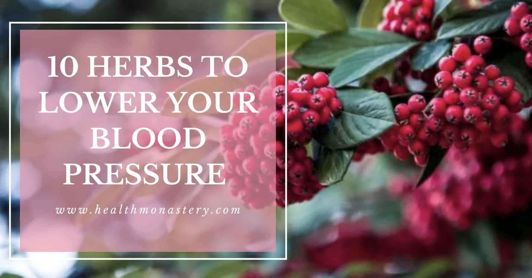 10 Herbal remedies to control blood pressure | hypertension |